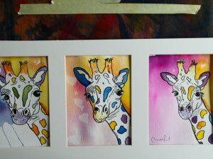 Triptyque de girafes