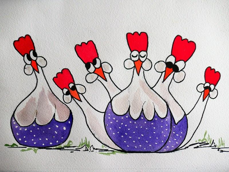 «Poules décoratives»