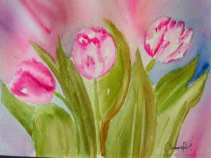 «Tulipa»