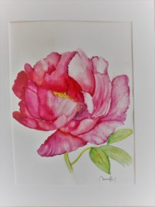 Read more about the article «Pivoine»